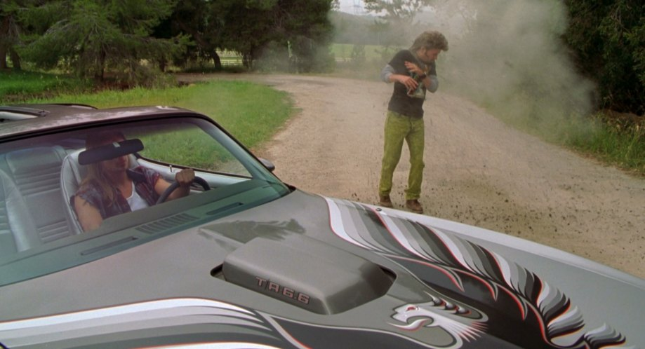 "Kid Rock Cars >> IMCDb.org: 1979 Pontiac Firebird Trans Am in ""Joe Dirt, 2001"""
