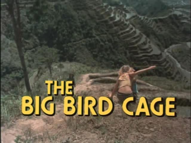 imcdborg  big bird cage  cars bikes trucks   vehicles