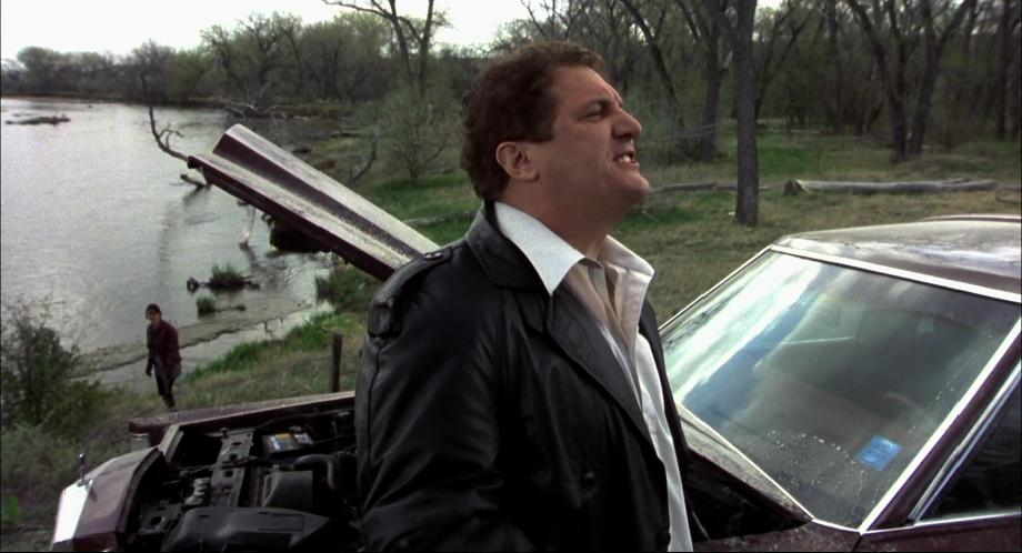 Imcdb Org 1982 Lincoln Town Car In Quot Dumb Amp Dumber 1994 Quot