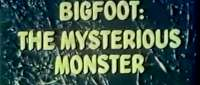 [Image: bigfoot1.jpg]