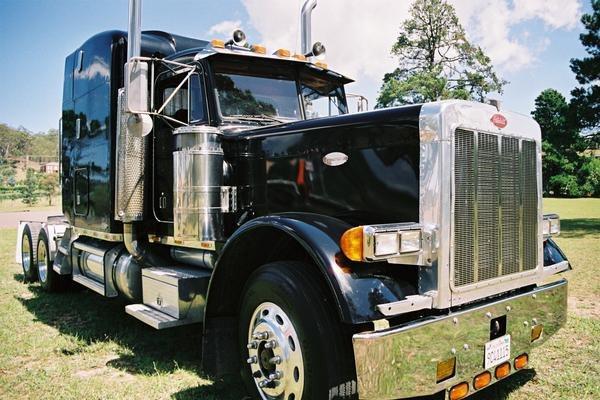 black dog movie ford truck