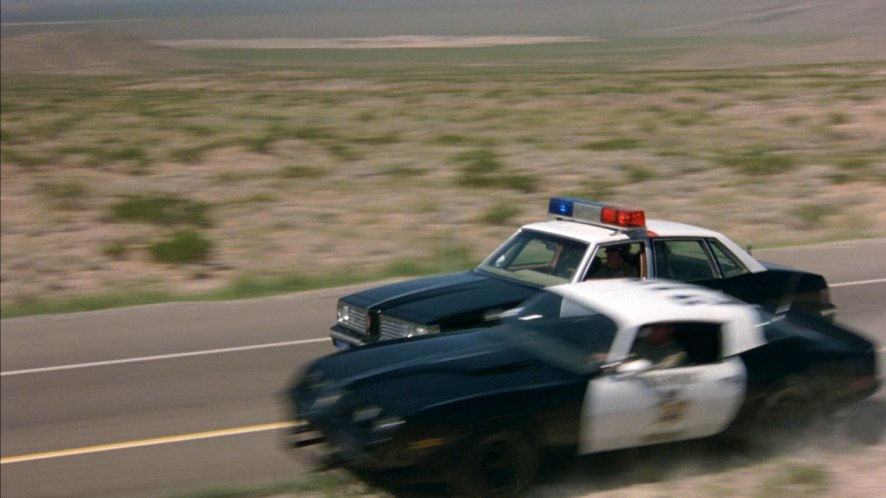 "IMCDb.org: 1980 Pontiac Firebird Trans Am in ""The ..."